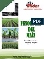140494249 Fenologia Del Maiz