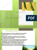 Seminario Final Cereales Saturnino
