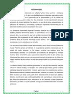 INTRODUCCION AMBIENTAL.docx