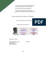 informe f5.1