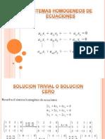 Algebra_sistemas Homogeneos de Ecuaciones
