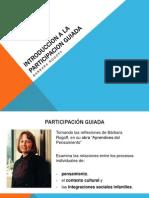 Introduccion a La Participacion Guiada Taller Corto
