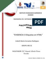 EVIDENCIA 3 ETIQUETAS.pdf