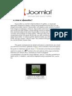 Joomla! v 1.5 Squeezebox in your Joomla! Website