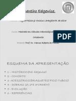 Seminrioedgewisemestrado2013 Vinicius Mayara2 130702211706 Phpapp02