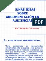 Algunas Ideas Sobre Argumentacio_n en Juicio