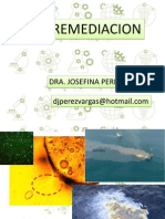 Curso 2014-1 Biorremediacion Clase 1