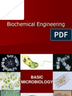 Biochemical Engineering Lecture