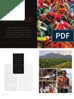 Gastronomy of Martinique.pdf