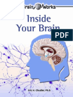 Inside Your Brain