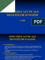 INFECTIILE+ACUTE+ALE+DEGETELOR+SI+MAINII