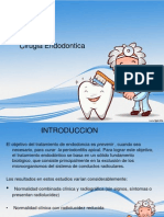Exposicion Final Cirugia Endodontica