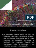 Comunicación célula-célula