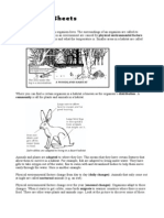 7C Summary Sheets