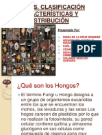 HONGOS expoooo