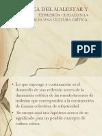 Estetica y Participacion Ciudadana Rojas