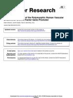 Stevens Et Al. - 2003 - Haplotype Analysis of the Polymorphic Human Vascular Endothelial Growth Factor Gene Promoter