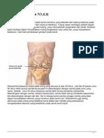 25-osteoartritis