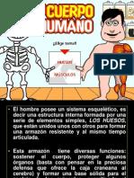 Esqueleto Humano 2014 Ciencias