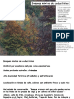 TEMA 2.3 BOSQUES MIXTOS Y ROBLEDALES.pdf