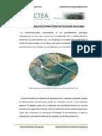 Videotoracoscopia Patologia Pleural