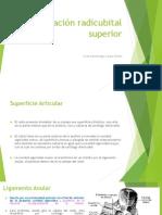 Articulación Radicubital Superior