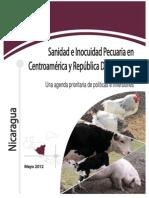 Informe Nacional Sobre Sanidad e Incouidad - Nicaragua