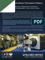 CSTT - VF800AT.pdf