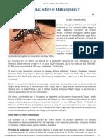 ¿Quieres Saber Más Sobre El Chikungunya