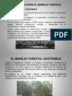 Manejo Forestal y PMF (C-3).ppt
