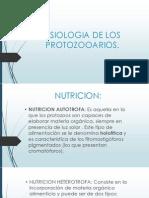 Fisiologia de Los Protozooarios
