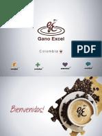 Presentación Corporativa Gano Excel