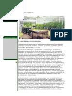 APLICACIONES DE LA BIOTECNOLOGÍA EN LA AGRICULTURA.doc