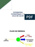 Bioquímica de La Fotosíntesis Ciclo de Calvin