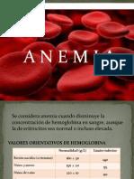 Presentacion de Anato