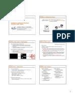 IAD_SMA.pdf
