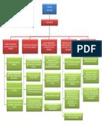 Presentación1 sena mapa conceptual.pptx