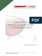 Curso Basico de Vinhos E Degustação - Winexperts