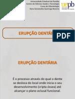 3. Dentição decídua