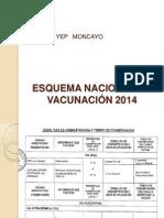 Esquema Nacional de Vacunacion 2014