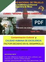 Contaminación Cultural [Recuperado]