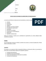 Estructura Del Informe de Termodinamica