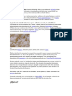 Lactobacilo.docx