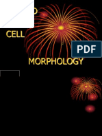 1. Blood Cell Morphology