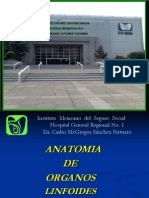 Anatomia Org.linf