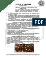 Quimica Organica Curso TP Reducido
