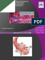 Cicatrizacion e Inflamacion