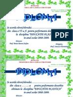 Final-dipl. Ed. Plastica 2009