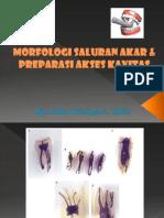 8. Morfologi Gigi Dan Preparasi Akses Kavitas