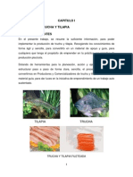 Proyecto Cultivo de Trucha y Tilapia